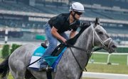 Louisville Trainer Hopes to Make History with Essential Quality